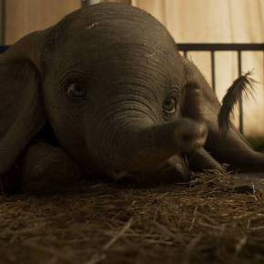 Disney Offers New Sneak Peek at 'Dumbo'